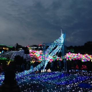 illumination izu02.JPG